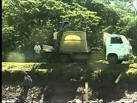 Pirarucu - Globo Rural Especial ( completo )
