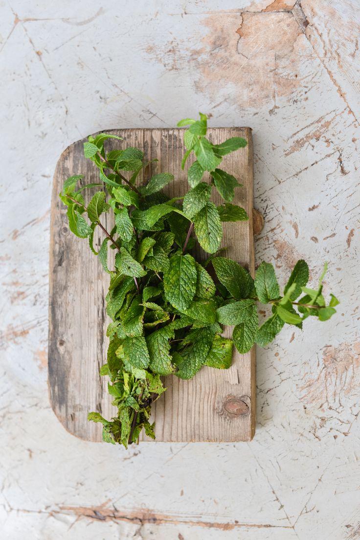 Non è un caso che nella vecchia vasca di ghisa di casa adesso mia madre  coltivi le aromatiche: con qualche erba e un bel bagno caldo si superano  svariati mali.  Per il jet lag (oltre all
