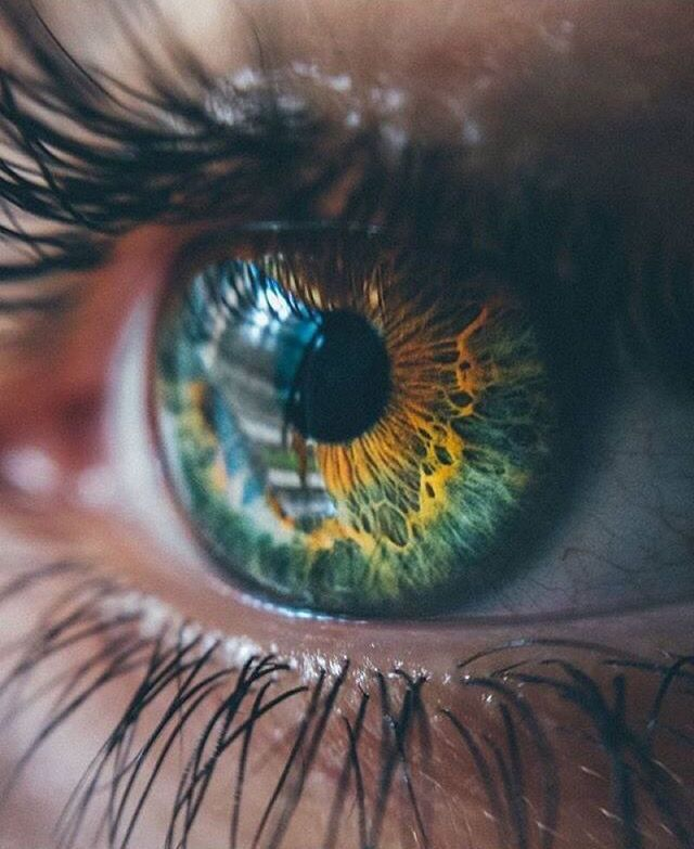 My love has this color eyes – #color #devices #eye…