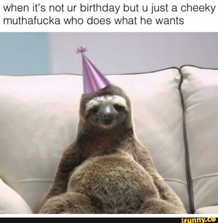 4e37f238af345ad38d553ff8e571f1ef happy birthday baby sloth