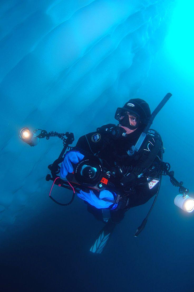 Polar diving in Antarctica