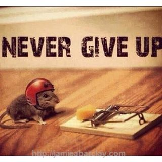 Never Give Up Even When All Seems Lost..Keep moving forward