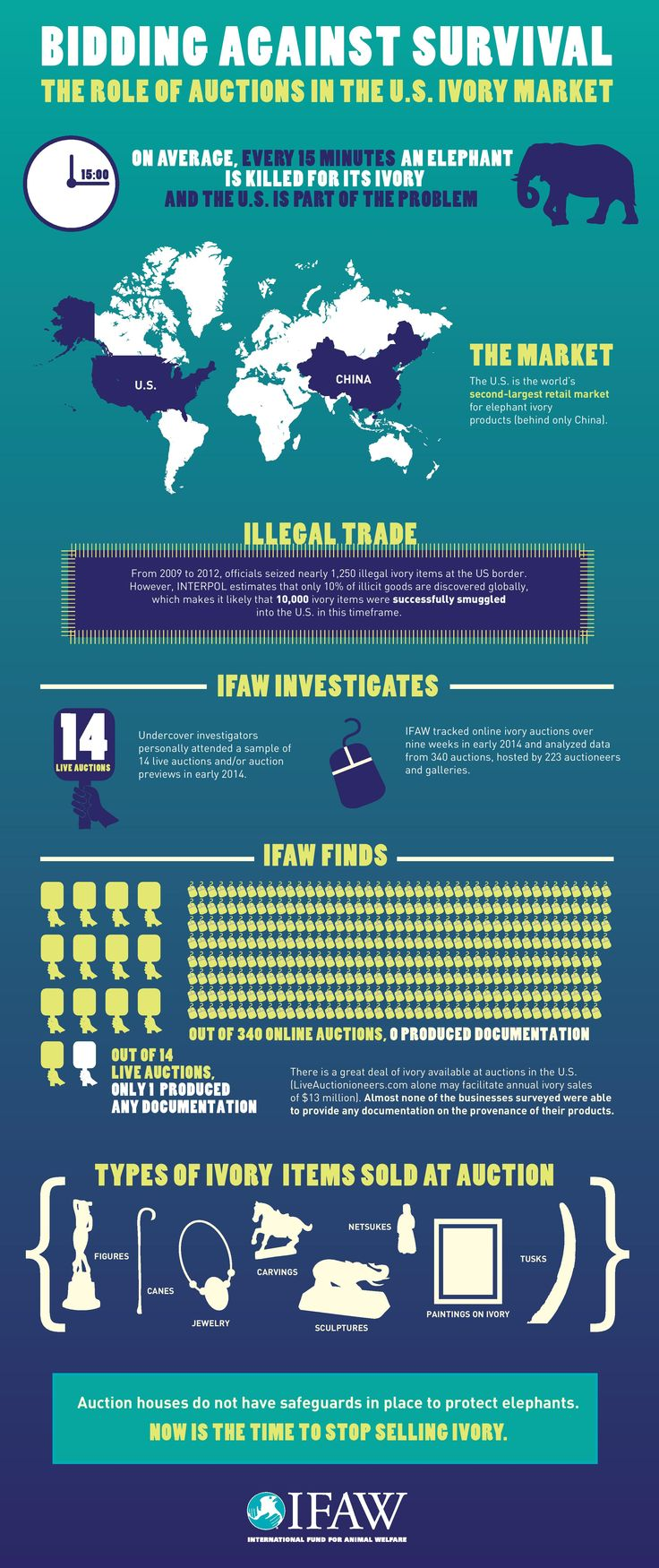 New IFAW Infographic Reveals How Auctions in the U.S. Contribute to the Illegal Ivory Trade