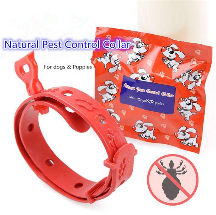 20PC/LOT Pet Cat Dog Flea Collar Anti Lice Pest Flea Collar Kill Lice Parasite Deworming New Pet Cleaning Supplies drop shipping #Affiliate