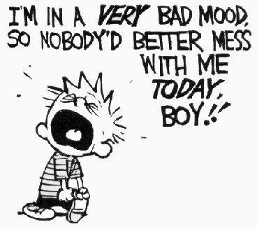 Casper en Hobbes - bad mood
