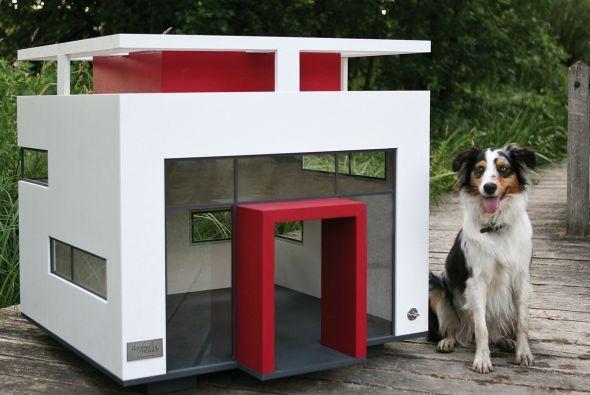 Diseños de casas para perros y mascotas-5