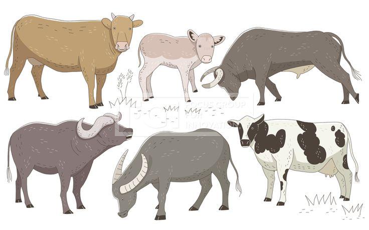SPAI148, 프리진, 일러스트, 동물, SPAI148b, 에프지아이, 라인, 컬러풀, 컬러, 색채, 소, 황소, 송아지, 젖소, 버팔로, 물소, 투우, 투우소, 스케치,#유토이미지