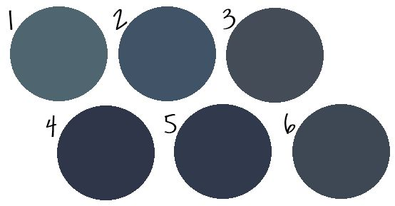 Benjamin Moore's Spellbound (1), Hudson Bay (2), Hale Navy (3) or Old Navy (4); Sherwin Williams Naval (5); and Behr's Starless Night (6)