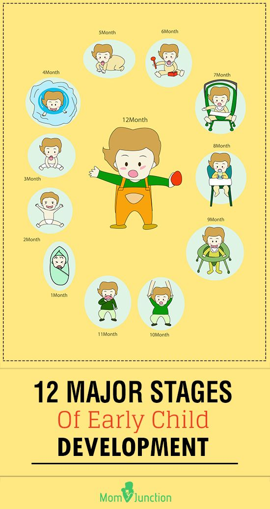 main stages of child development from An essay on perspectives underlying child development  a main contrast of  understanding the different stages in a developing child will help anyone that.