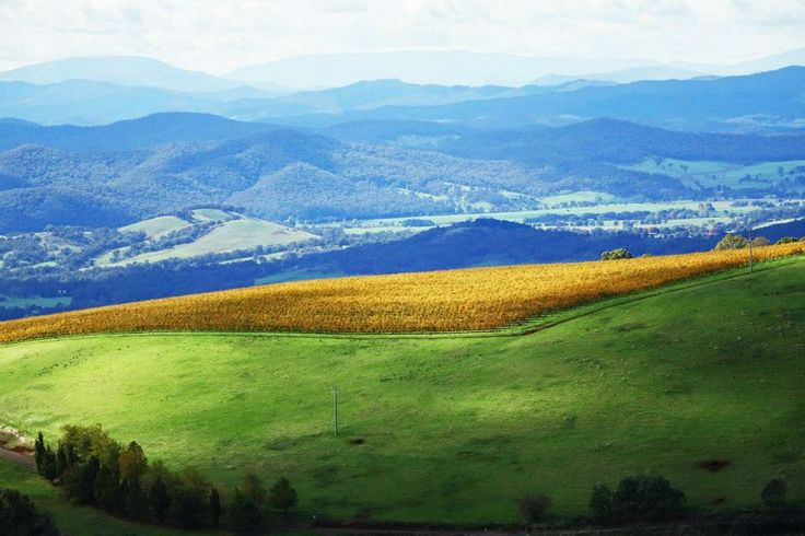 King Valley, Victoria, Australia