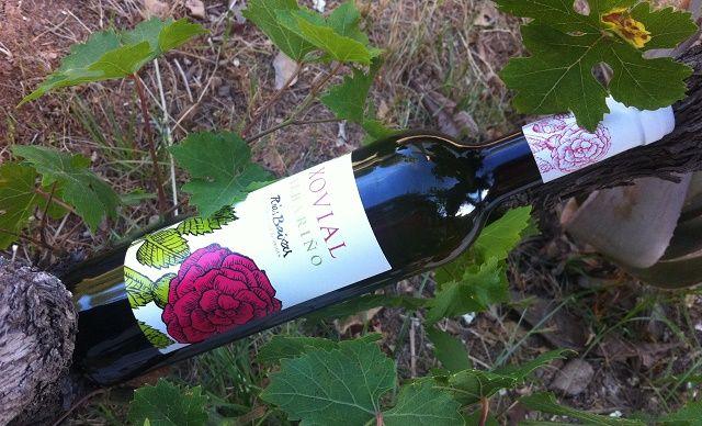 #RiasBaixas  #Adegas #Tollodouro #Albariño #Xovial #Alegre #jovial #vino #Albariño