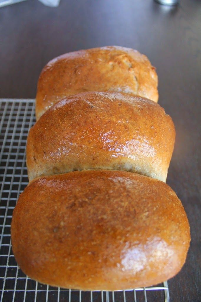 Softest Bread Ever - Like a Pillow for your Deli and Cheese  Baking Bread at Home