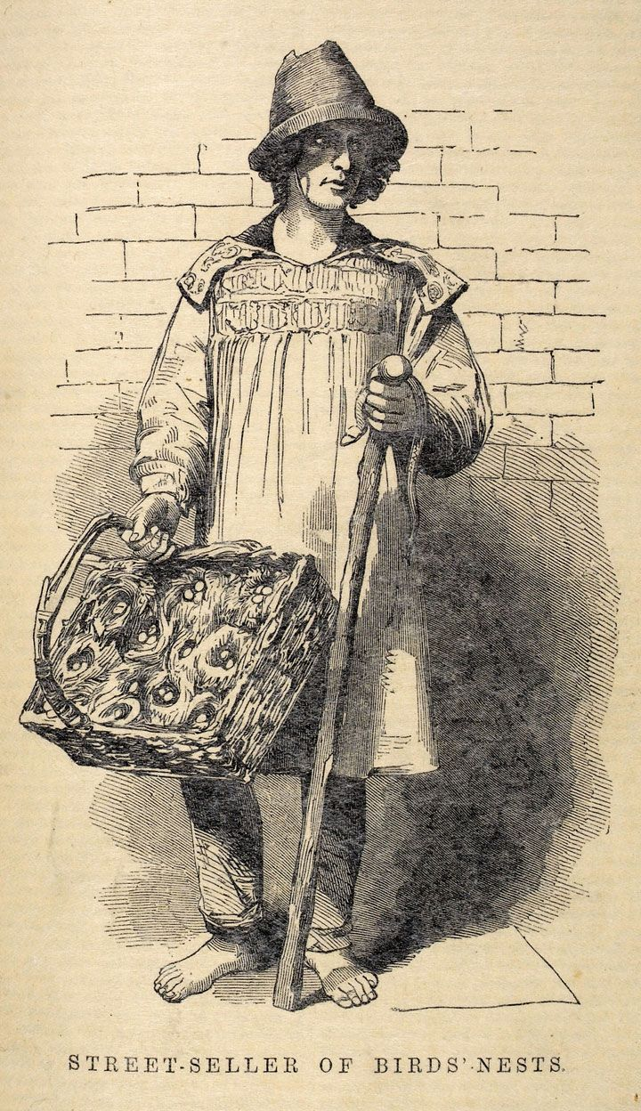 There were around 30,000 street sellers (known as costermongers) in London, each selling his or her particular wares from a barrow or donkey-cart. These goods included oysters, pea soup, pies and puddings, sheep's trotters, street-ices, as well as 2nd hand musical instruments, live birds and even birds nests. Image: A street seller of birds' nests, 1851