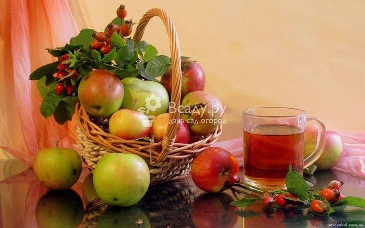 Компот из яблок на зиму рецепт приготовления с шиповником. Очень приятный согревающий напиток, поможет почувствовать себя уютней морозным зимним вечером
