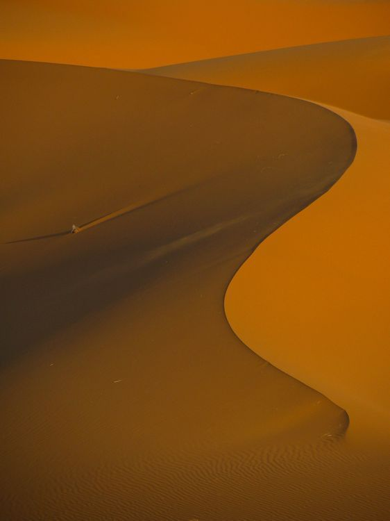 Western Sahara Photo by Sophie Porritt — National Geographic Your Shot