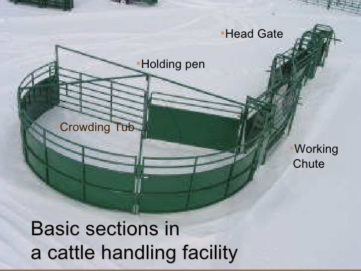 how to build cattle pens