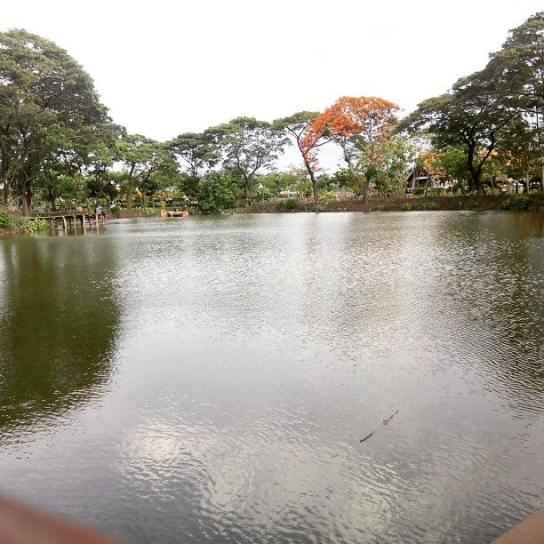 Wonorejo park surabaya