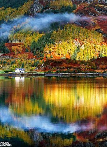The last days of a golden autumn ~ Scotland Highlands