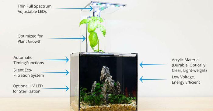 EcoQube C- Your Window to Nature by Aqua Design Innovations — Kickstarter