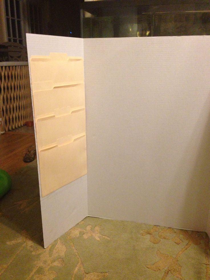 13 best images about Tri-fold Boards on Pinterest