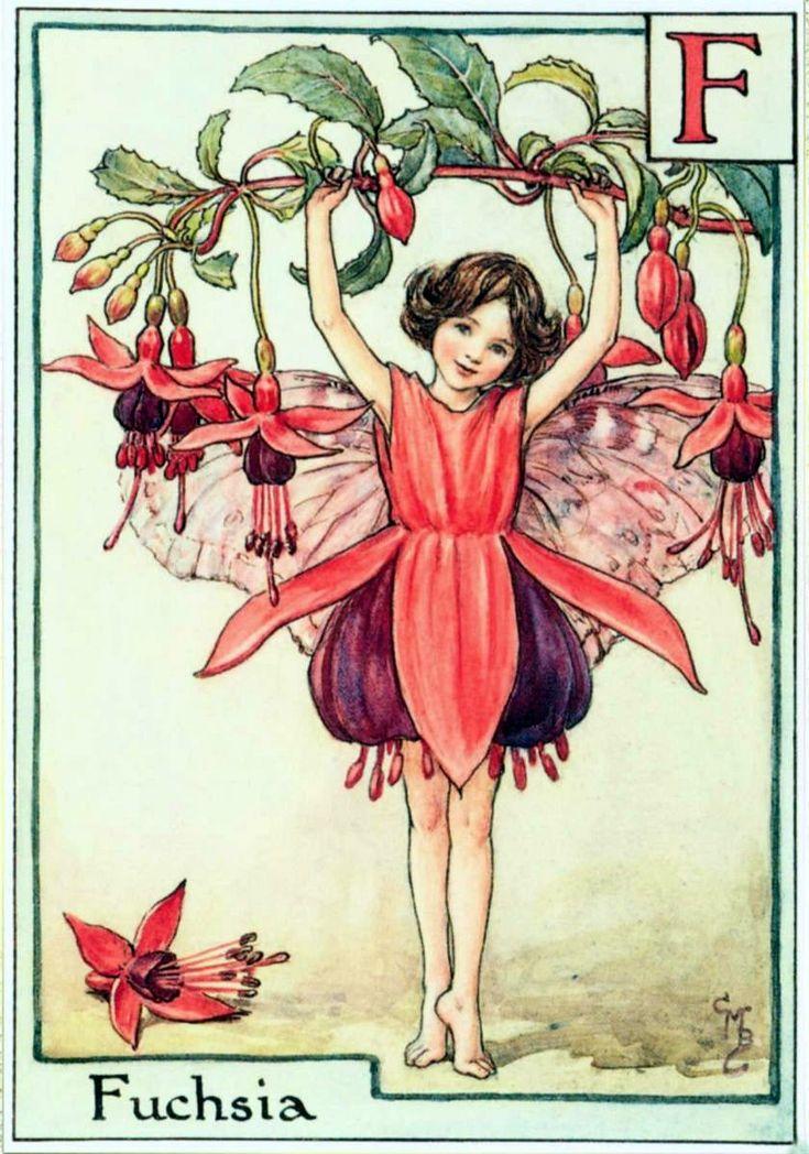 Fuchsia, художник: Сесиль Мэри Баркер, арт, фея, Фу́ксия (лат. Fúchsia), серия: Alphabet Fairies