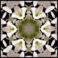 Grace van den Dobbelsteen kunst abstracte schilderijen digitale kunst Scoop.jpeg 413