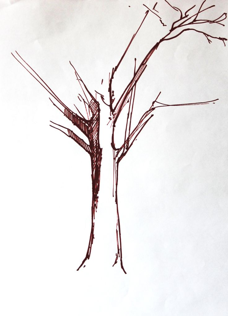 Tree drawing, 2016