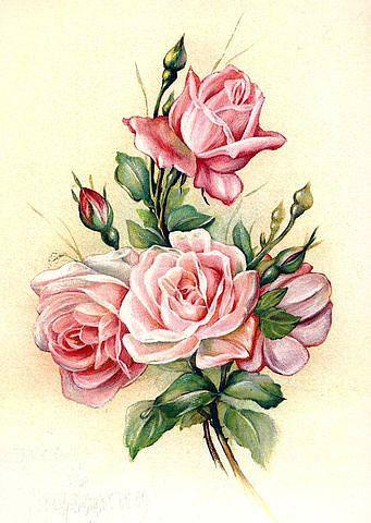 роза - Схемы вышивки - маргаритка26 - Авторы - Портал «Вышивка крестом»