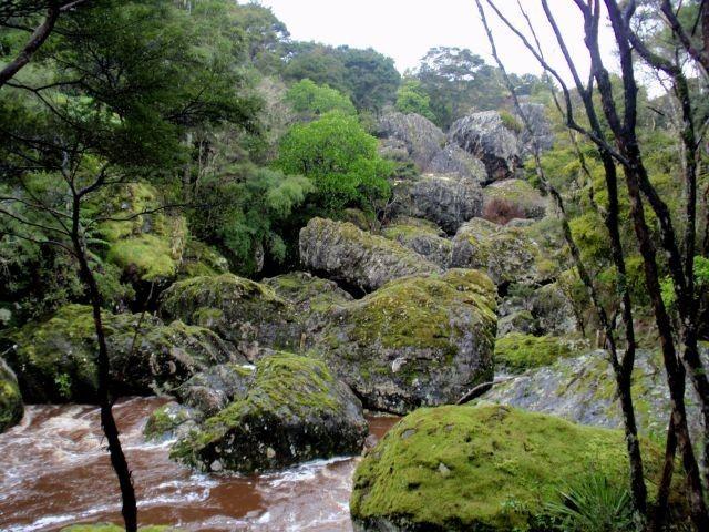 Wairere boulders at horeke nature park near hokianga - lots of walking trailshttp://www.wairereboulders.co.nz/index.html