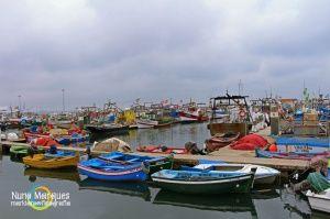 Gentes e Locais/Barcos em Setúbal