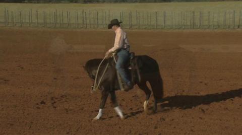 Studied all Original Fundamentals 2005- 2010. Multimedia - Downunder Horsemanship