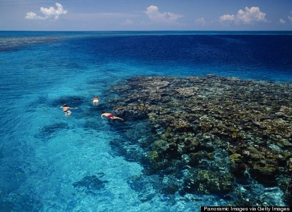 """Belize is set to become Central America's newest hotspot, and if so, Ambergris Caye will be its crowning destination. TripAdvisor named Ambergris a """"Destination on the Rise"""" last year, probably because tourists are catching on to the immense diving potential of the Great Blue Hole. #travel #AmbergrisCaye #Belize"""