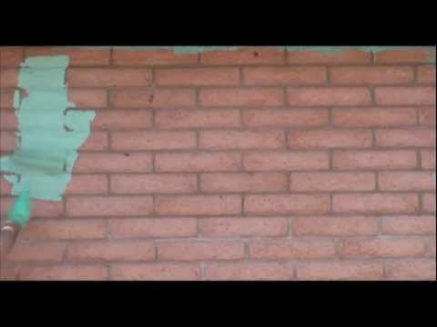 Renting a home: Property repairs and maintenance (English)