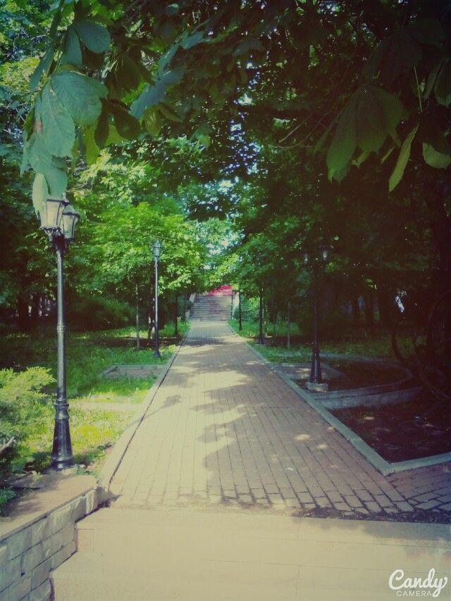 Морозовский сад (Москва)