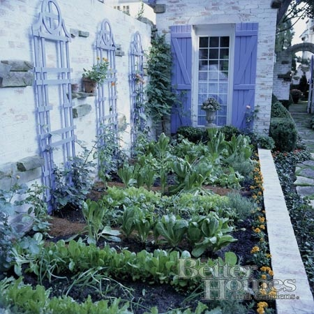 Location unknown. Strong use of color in a different type of potager garden