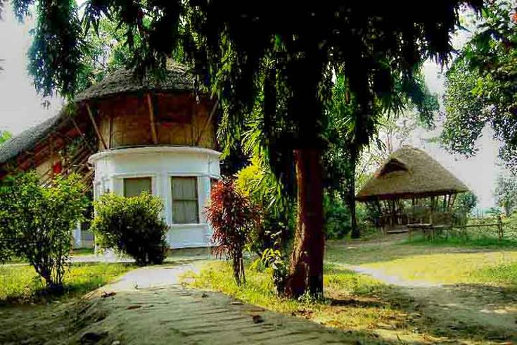 Tree house in India - West Bengal, Mayapur