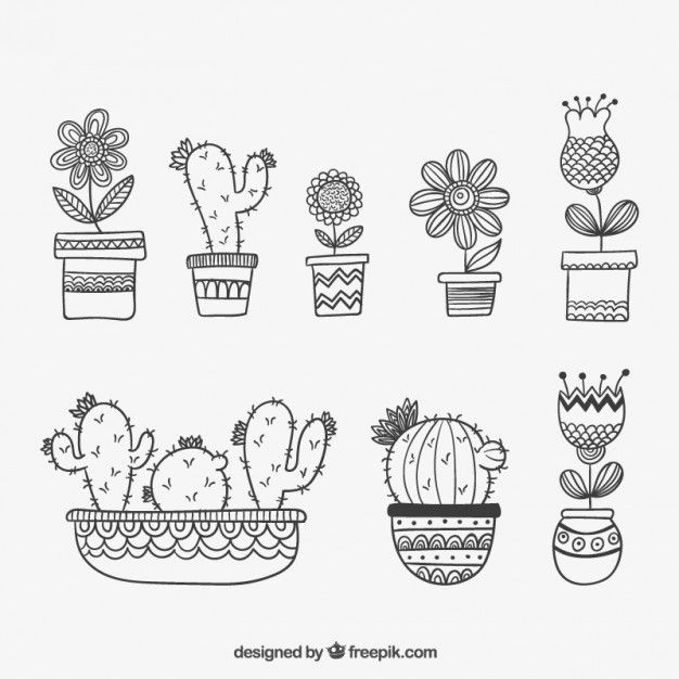 Ms de 25 ideas increbles sobre Dibujo de planta en Pinterest