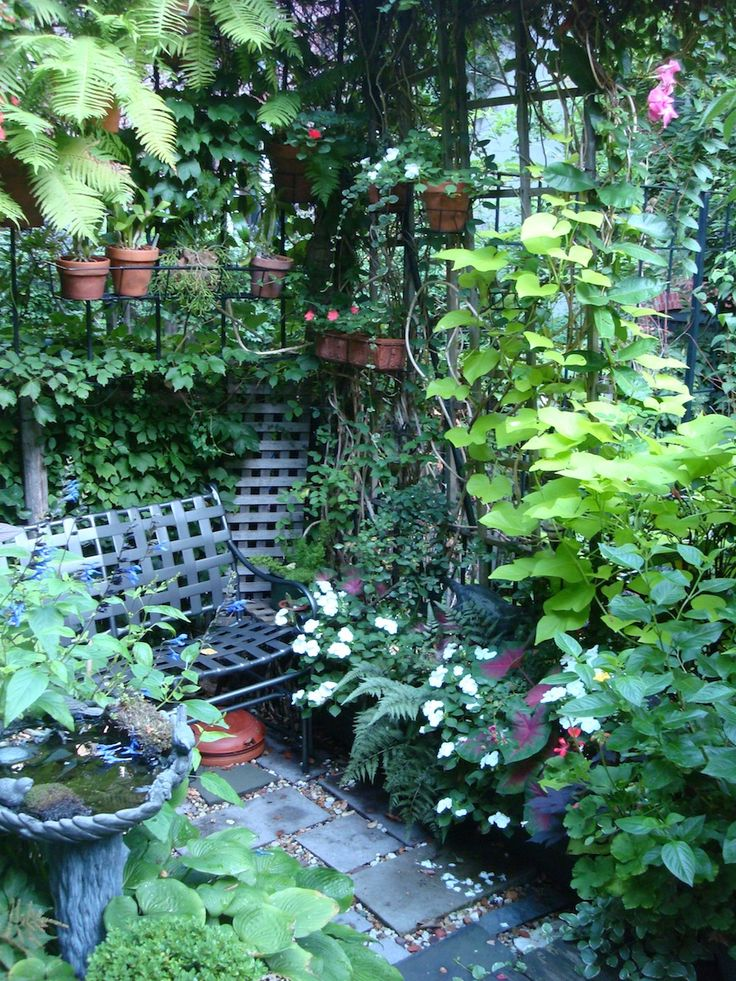 Small garden, New York style. They know how to do small well.