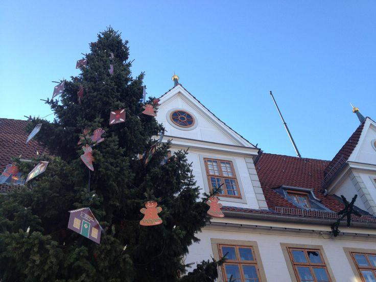 Weihnachten 2013 steht vor der Tür! Der Weihnachtsbaum vor dem Alten Rathaus steht schon.