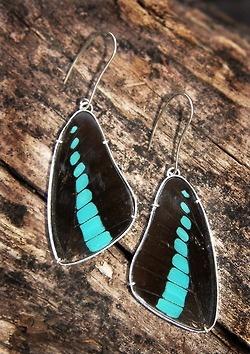 Butterfly wing earrings . 2012
