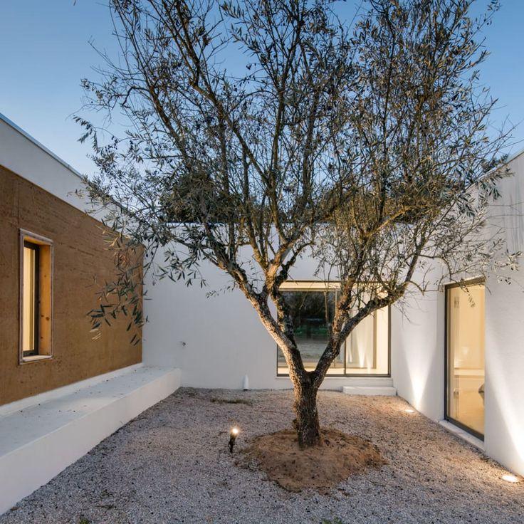 blaanc, João Morgado  · Vineyard House. Montijo, Portugal
