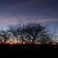 coucher de soleil en Alsace
