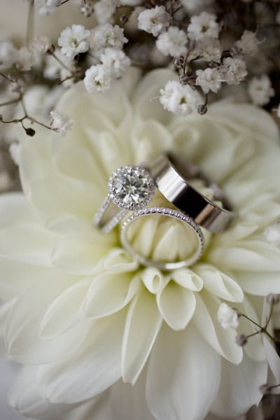 ring shot idea (white dahlia/ baby´s breath) - Somis Wedding at Hartley Botanica from Andy Seo Photography
