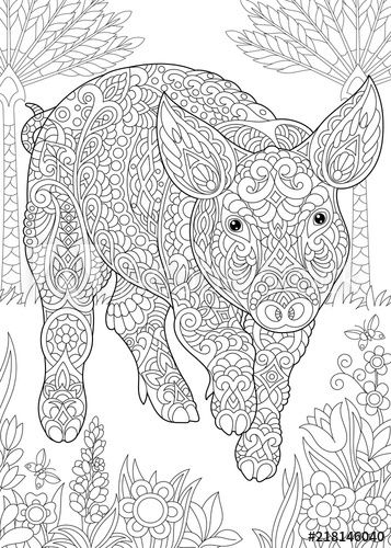 Image Result For Year Of The Pig Coloring Pages Animal Coloring