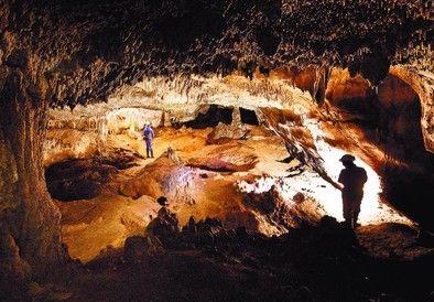 arkeODA: 430.000 yıllık kafatasındailk cinayetin izleriSim...