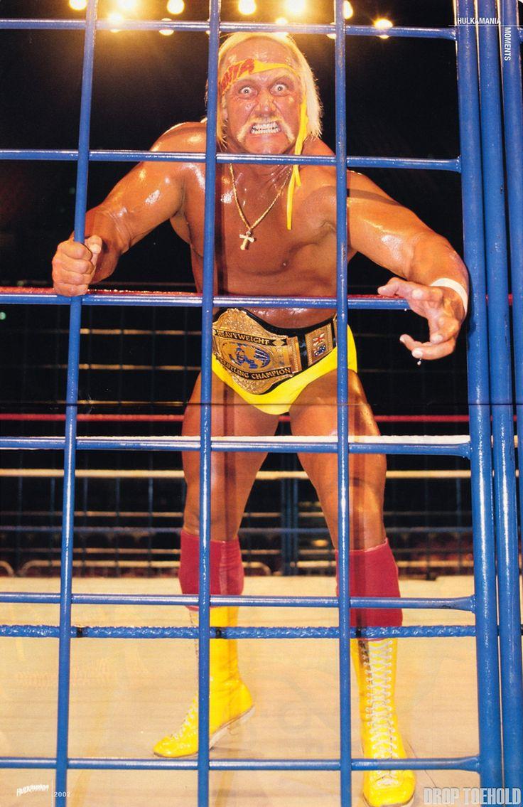 Hulk hogan belt-6184