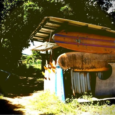 【$locomocoのブログ-ipodfile.jpg】サーフボーデでヤギ小屋!!