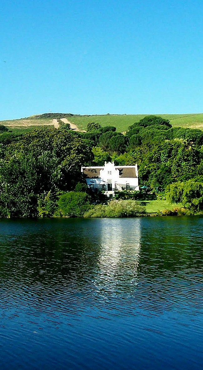 Dutch colonial home and vineyard - South africa