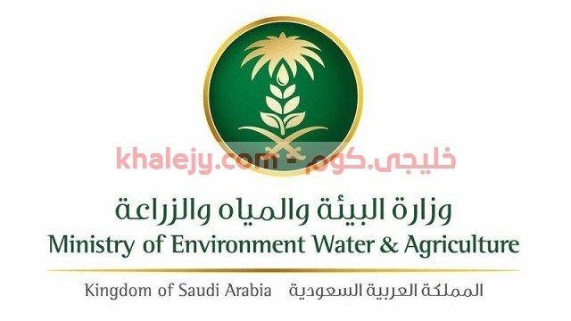 وزارة الزراعة وظائف منظمة الاغذية والزراعة بالامم المتحدة Environment Agriculture