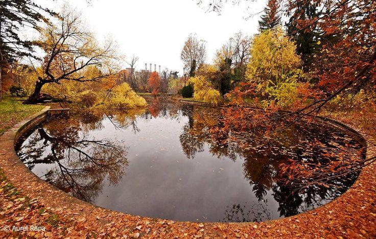 Gradina Botanica, Bucuresti, RO (photo by Aurel Rapa)